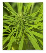 Marihuana Fleece Blanket