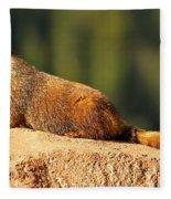 Marmot Life Fleece Blanket