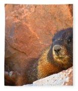 Marmot On The Rocks Fleece Blanket