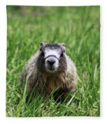 Marmot Pup Fleece Blanket