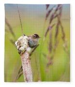 Marsh Wren Fleece Blanket