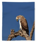 Martial Eagle Fleece Blanket