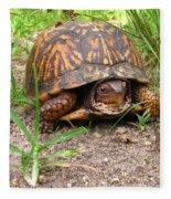 Maryland Box Turtle Fleece Blanket