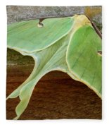 Maryland Luna Moth Fleece Blanket