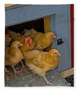 Aunt Mary's Chickens Fleece Blanket