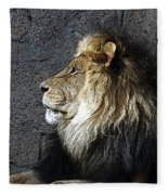 Master Fleece Blanket