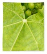 Maturing Wine Grapes Fleece Blanket