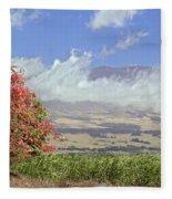 Maui Science City Fleece Blanket