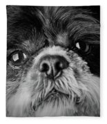 Max - A Shih Tzu Portrait Fleece Blanket