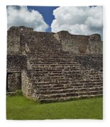 Mayan Ruins 2 Fleece Blanket