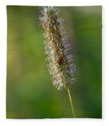 Meadow Foxtail Fleece Blanket