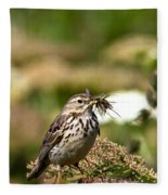 Meadow Pipit With Food Fleece Blanket