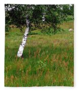Meadow With Birch Trees Fleece Blanket