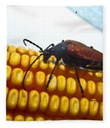 Meal Time Fleece Blanket