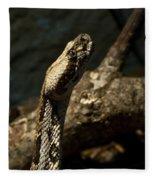 Mean Poisonous Snake Fleece Blanket