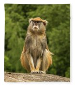 Meditating Monkey Fleece Blanket