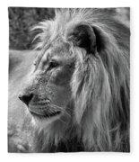 Meditative Lion In Black And White Fleece Blanket
