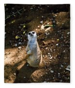 Meerkat     Say What Fleece Blanket
