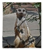 Meerkat 2 Fleece Blanket