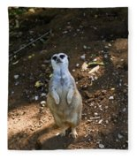 Meerkat Poising Fleece Blanket