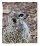 Meerkat Portrait Fleece Blanket