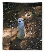 Meerkat Responding Fleece Blanket
