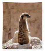 Meerkat Standing On Rock And Watching Fleece Blanket