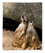 Meerkats Keeping An Eye Out Part 2 Fleece Blanket