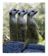 Meerkats On The Lookout Fleece Blanket