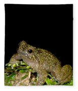 Mehu�n Green Frog Fleece Blanket