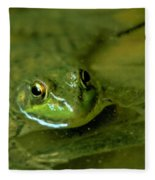 Mellow Frog Fleece Blanket