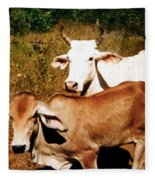 Mexican Cattle Fleece Blanket