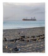 Miami Beach Flock Of Birds Sunrise Fleece Blanket
