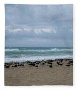 Miami Beach Flock Of Birds Fleece Blanket