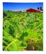 Michigan Surgar Beet Farming Fleece Blanket