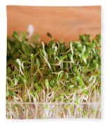 Micro Green Fleece Blanket