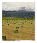 Mid June Colorado Hay  And The Twin Peaks Longs And Meeker Fleece Blanket