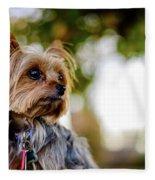 Mighty Dog Fleece Blanket