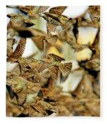 Migration Of The Starlings Fleece Blanket