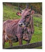 Milk Chocolate Basic Supplier Fleece Blanket