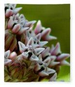 Milkweed Pink Fleece Blanket