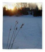 Milkweed Stems Winter Sunrise Fleece Blanket