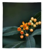 Milkweed Fleece Blanket