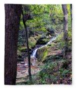 Mill Creek Falls Fleece Blanket