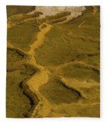 Minerva Terrace Detail 4 Fleece Blanket