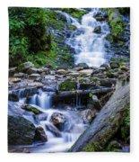Mingo Falls Two Fleece Blanket