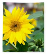 Mini Sunflower And Bud Fleece Blanket