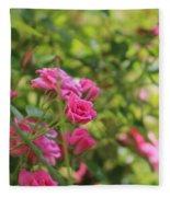 Miniature Fuchsia Roses Fleece Blanket