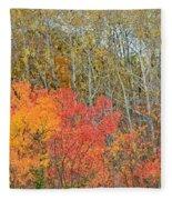 Minnesota Autumn 55 Fleece Blanket