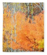 Minnesota Autumn 58 Fleece Blanket